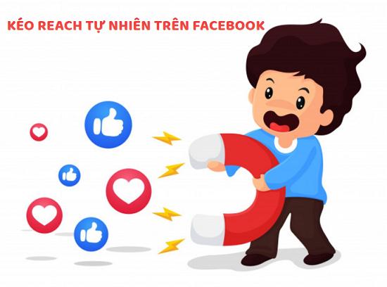 Vì lý do nào mà giá quảng cáo Facebook Ads tăng mà hiệu quả có xu hướng giảm?