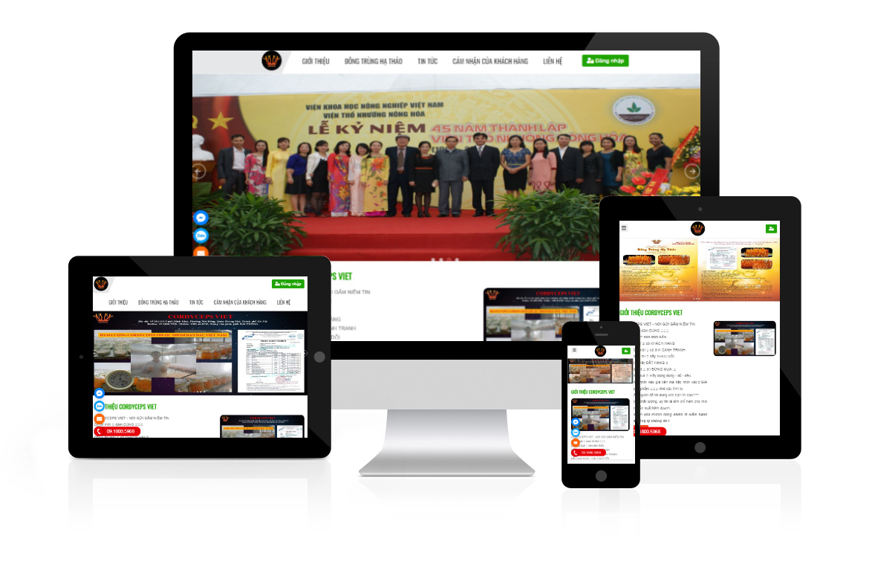 Thiết kế web Công ty Cordyceps Việt